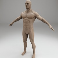 male body character