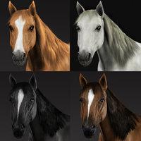 3d obj horses fur