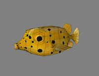 3dsmax fish fugu