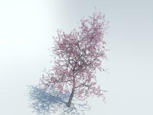 3d max realistic sakura tree