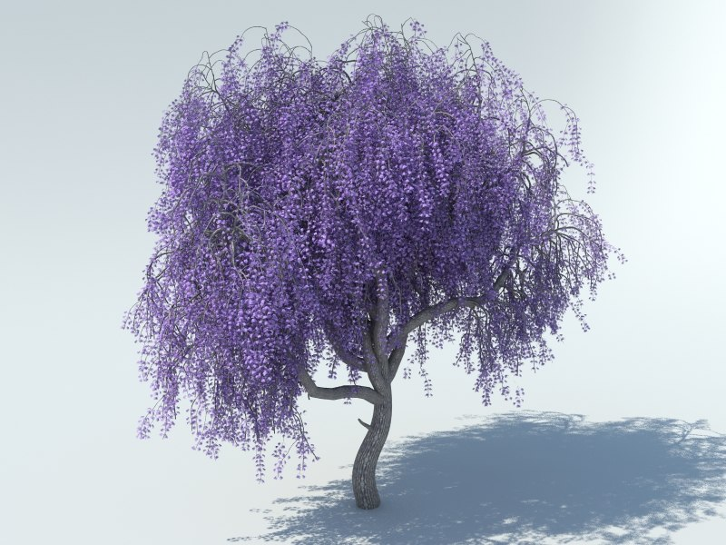 realistic sakura tree 3d max