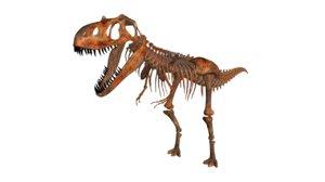 3d model fossils animals rock