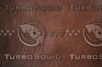 Leather_Texture_0014