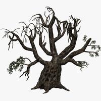 Scary Olive Tree