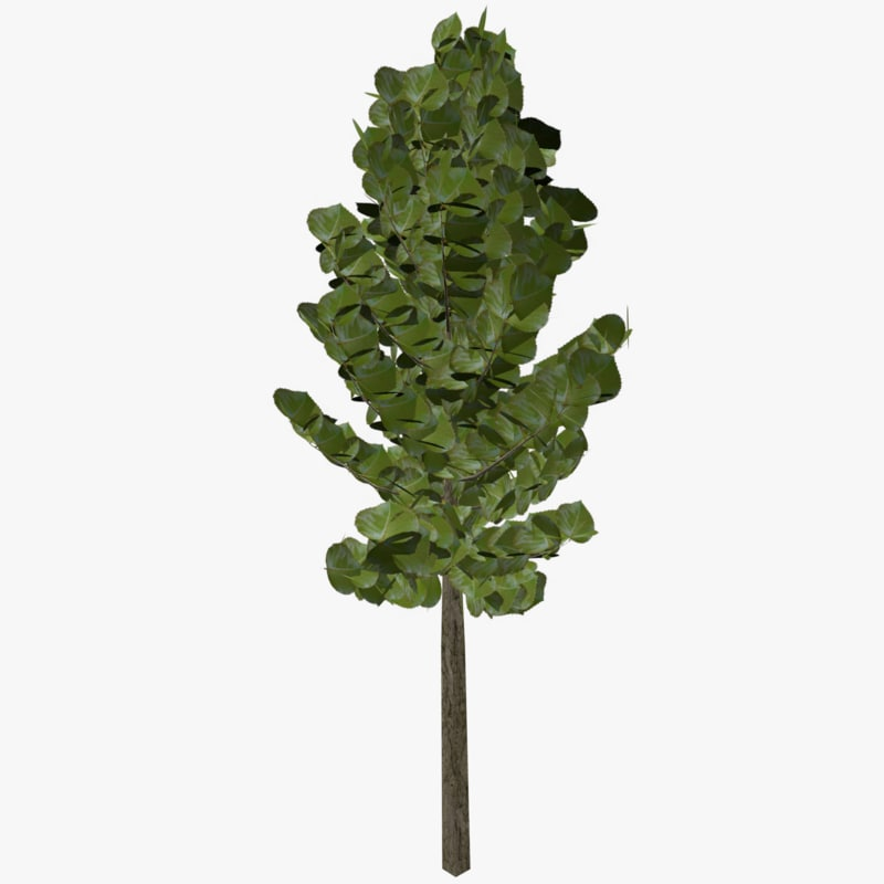free 3ds model tree