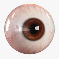 eyes 3d models