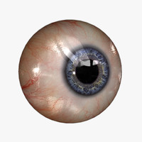 3d realistic human eye 20
