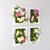Flower in the frame to decorate wall interior