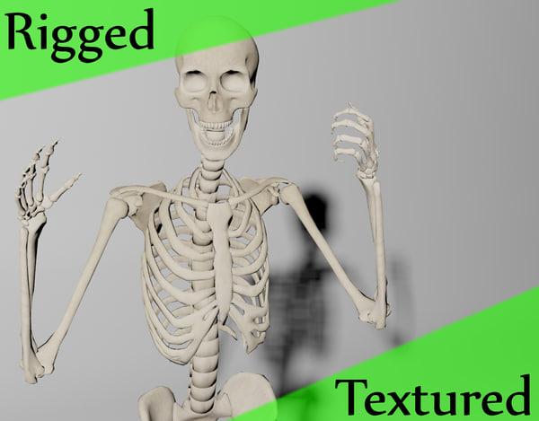 rigged skelet 3d model