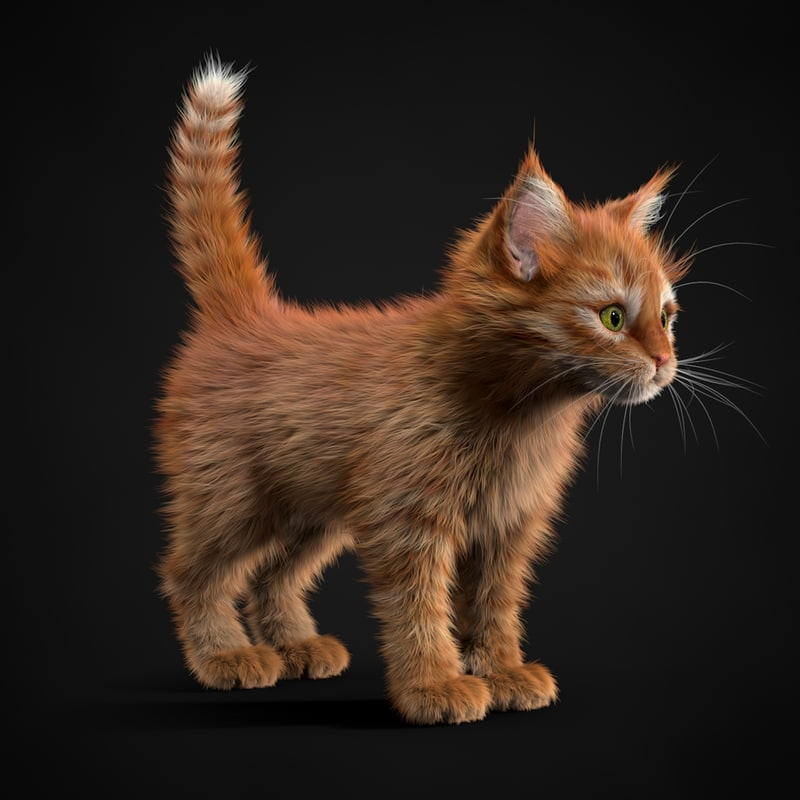 3ds max kitten red