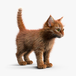 3ds max kitten red