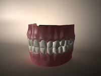 3d model mouth gums tongue