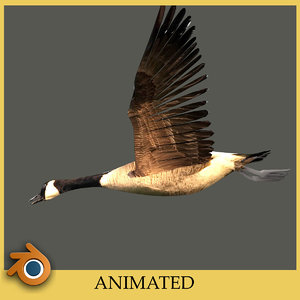 blender canada goose
