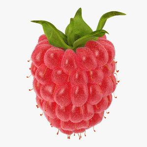 raspberry 3 fur 3d max