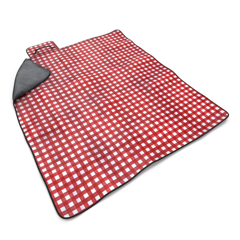 picnic blanket red max