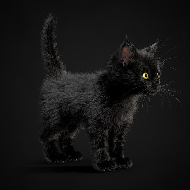 3ds kitten black