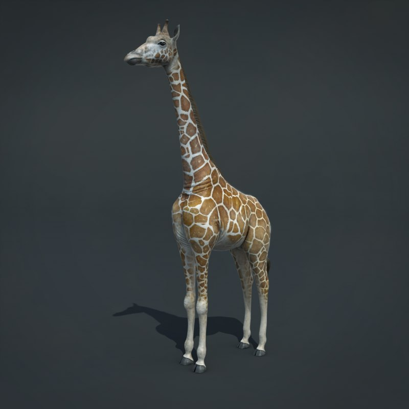3d realistic giraffe