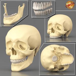 anatomy medical science 3d x