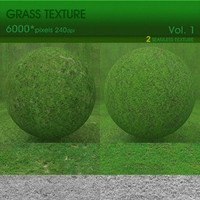 High Resolution Grass Texture Vol. 1 (2 PCS)