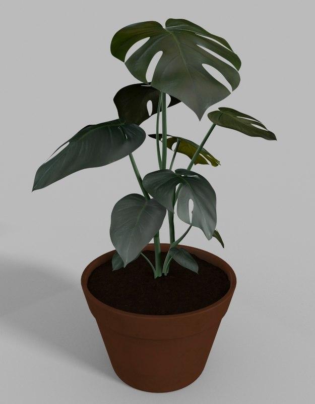 3d indoor fruit salad plant