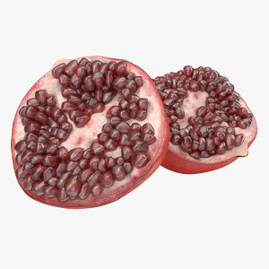 3d model of pomegranate cross section modeled
