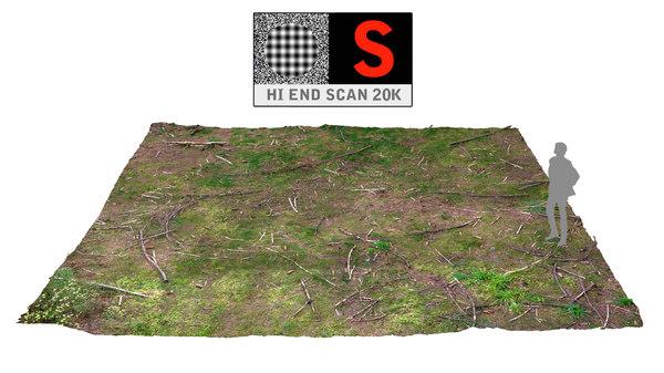 3d model scanned 20k