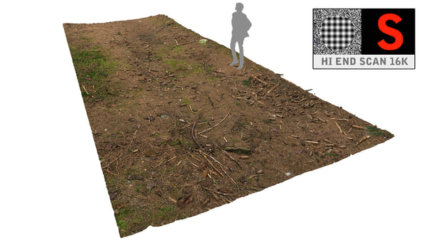 3d litter ground scan model