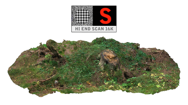 forest clump roots 3d max