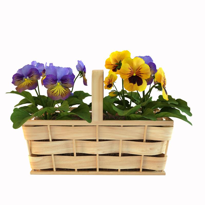 3ds max violets basket