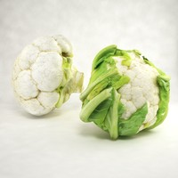 c4d cauliflower leafs