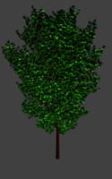 Tree realistic