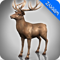 3d deer adapted rigging model
