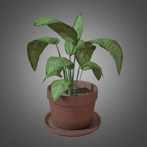 3d potted plant - ready