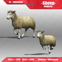 sheep animations 3d model