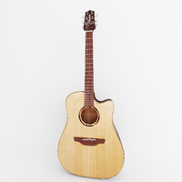 matte takamine acoustic guitar 3d 3ds