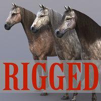 horse rig max