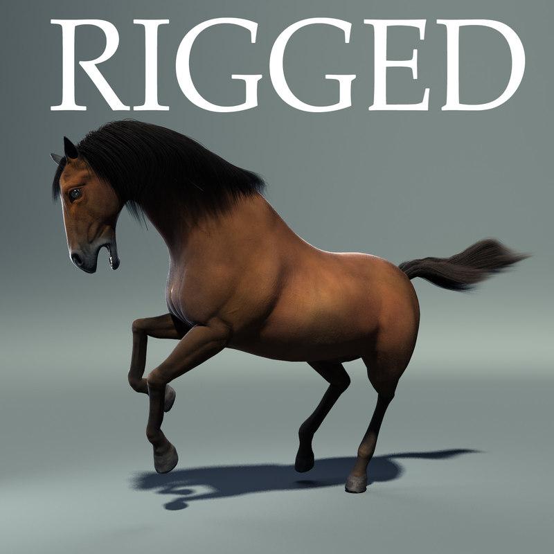 max horse rig