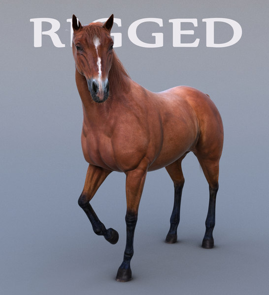 ma realistic horse rig