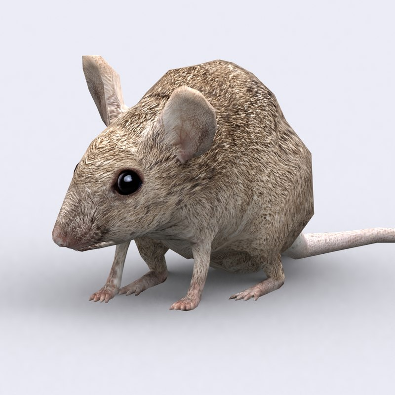 3ds mouse