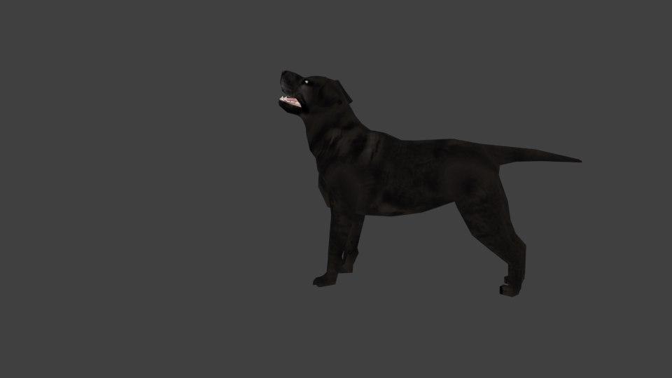 3ds labrador