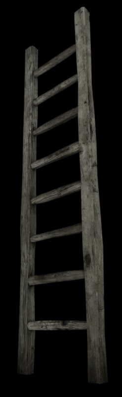 x wooden ladder