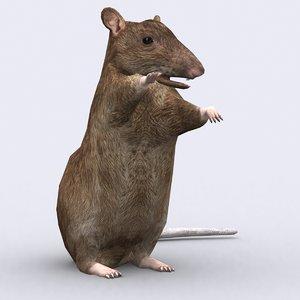 3d rat critters model