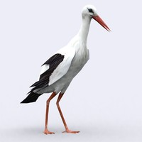 stork 3ds