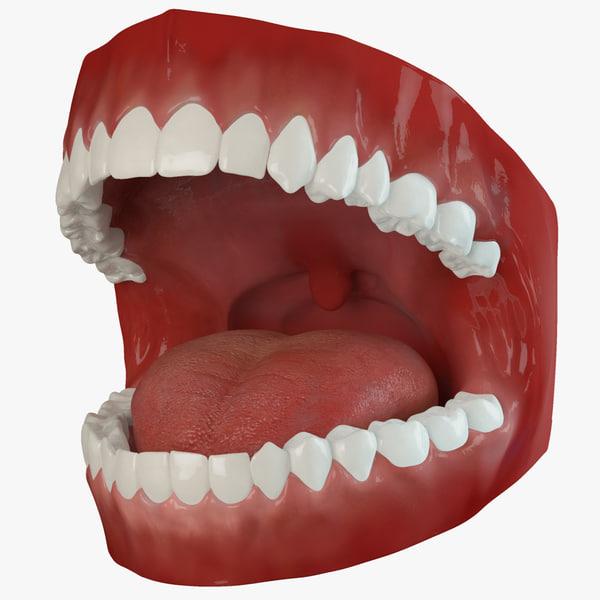 max teeth rigged human