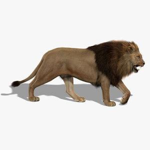 lion fur 3d obj