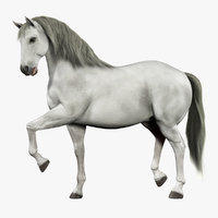 Horse (White) (RIGGED) (FUR)