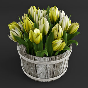 tulips plant 3d model
