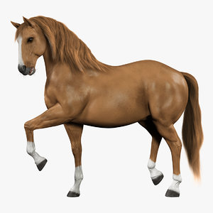 horse rigged fur model
