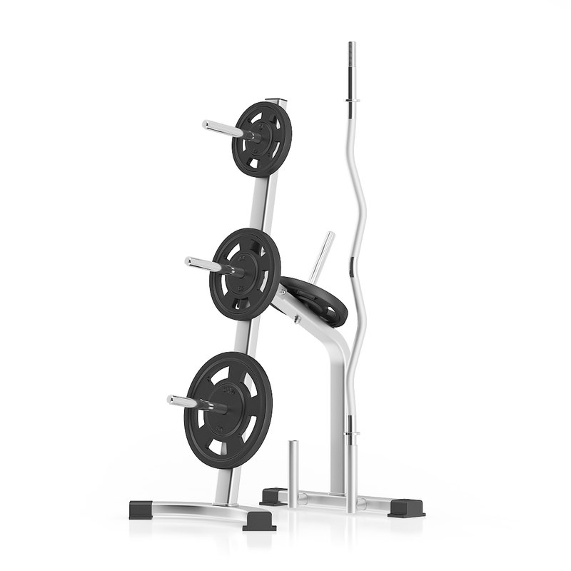 silver weight rack 3d max