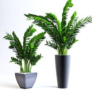 max plants office